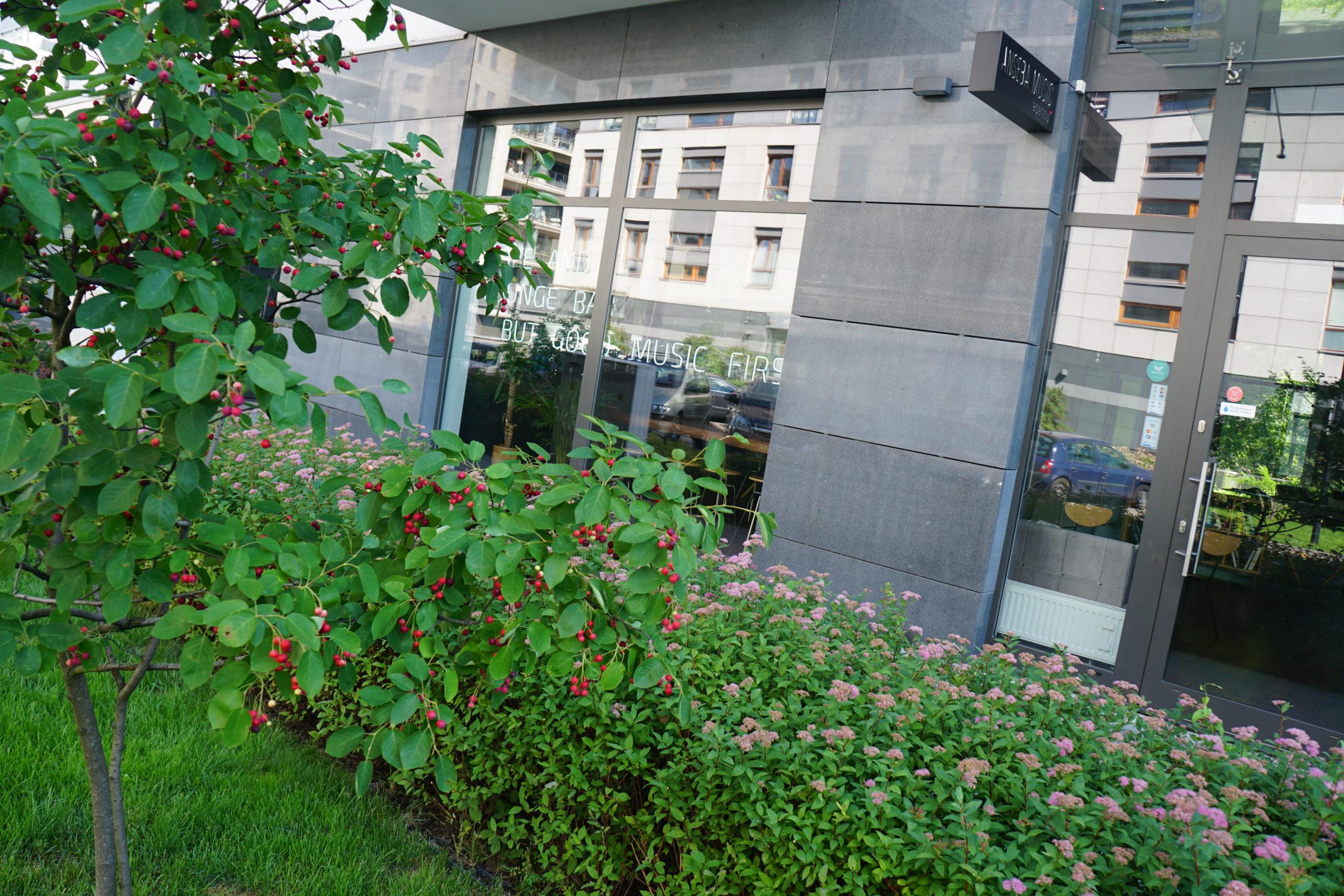 New York Office1